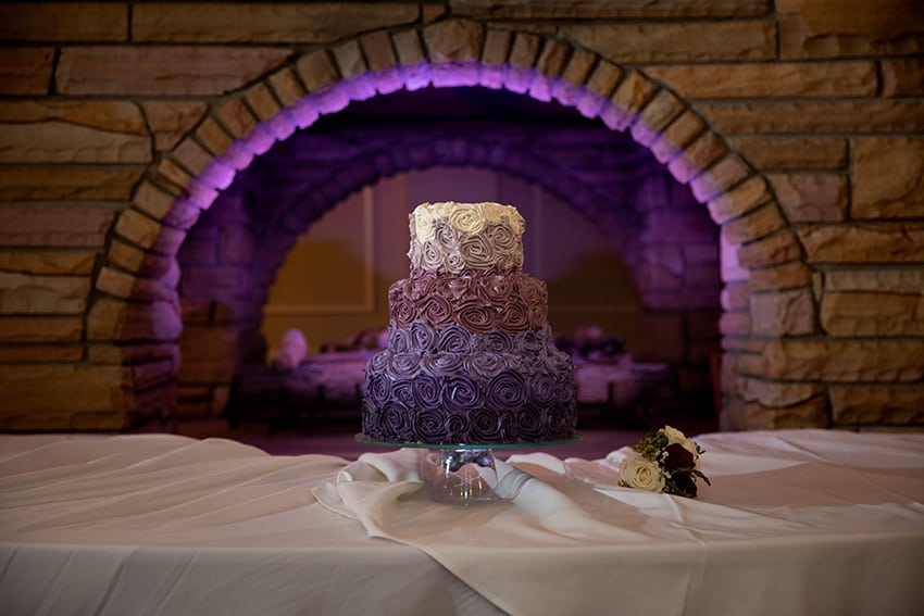 Wedding cake at Meadowbrook Inn by Hallmark Cakes